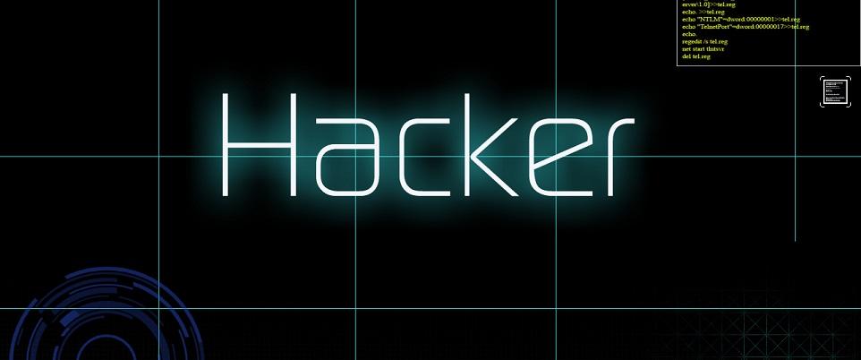 Kolejne ofiary ataku hakerów
