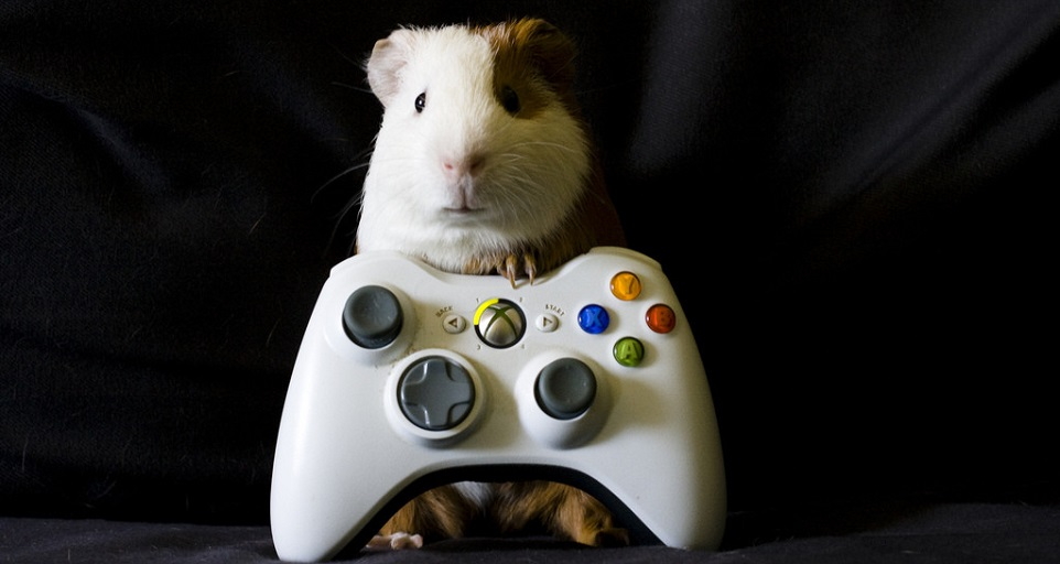 Xbox będzie prawdziwym centrum domowej rozrywki?